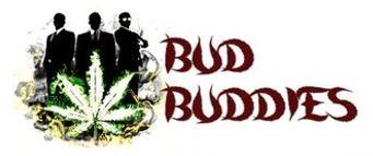 Bud Buddies | Premium Cannabis Seeds